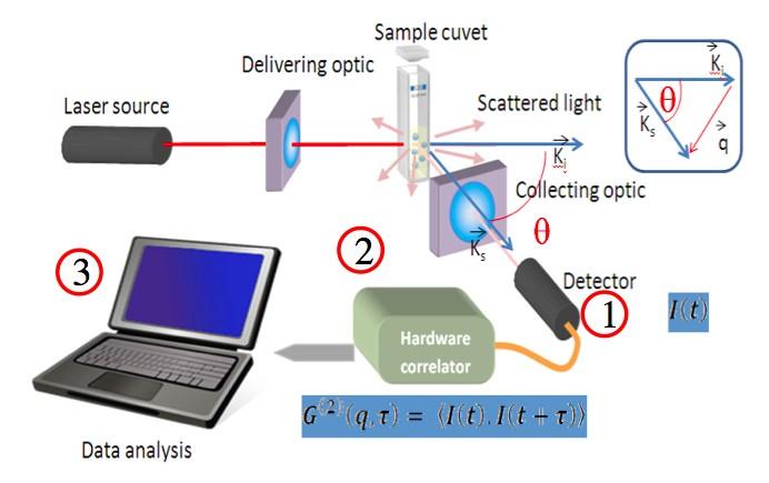 schema dynamic light scattering system - VASCO FLEX